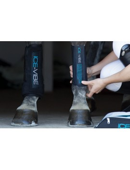 HORSEWARE ICE-VIBE Tendón