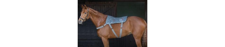 Aparatos de masaje para el caballo